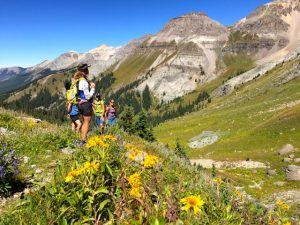 Hiking through Wildflowers in Liberty Bell Basin - Telluride, Colorado