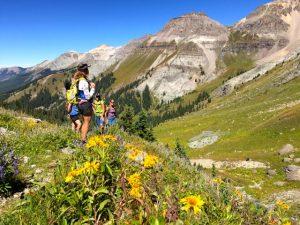 Hiking through Wildflowers in Liberty Bell Basin - Telluride, Colorado